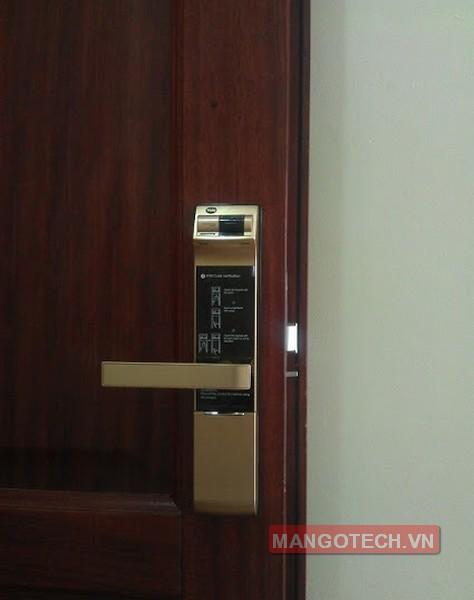 khoa-van-tay-yale-4109-gold-08