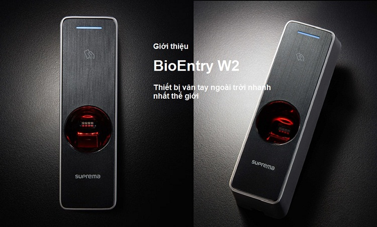 bioentry_w2_1